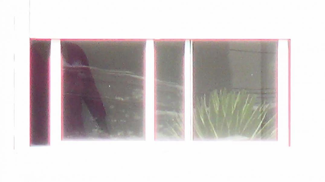 window peep 01